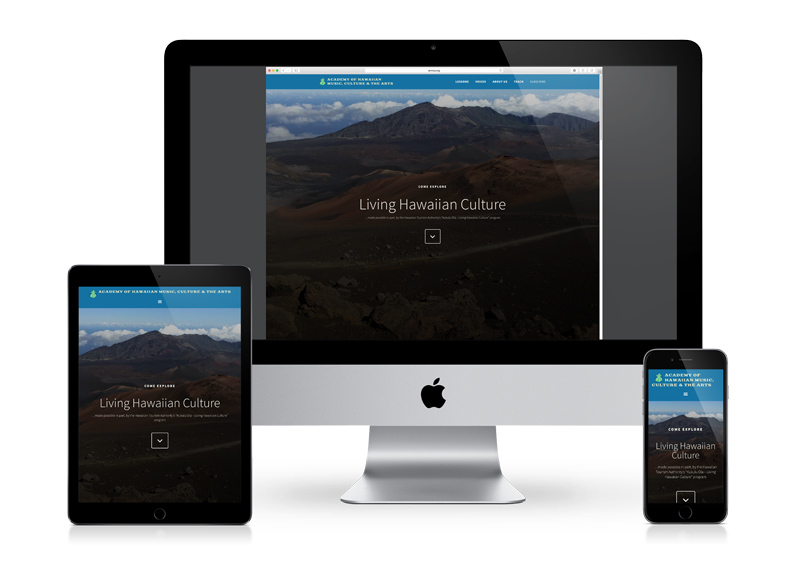 Nonprofit responsive website
